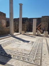 House of Dionysus